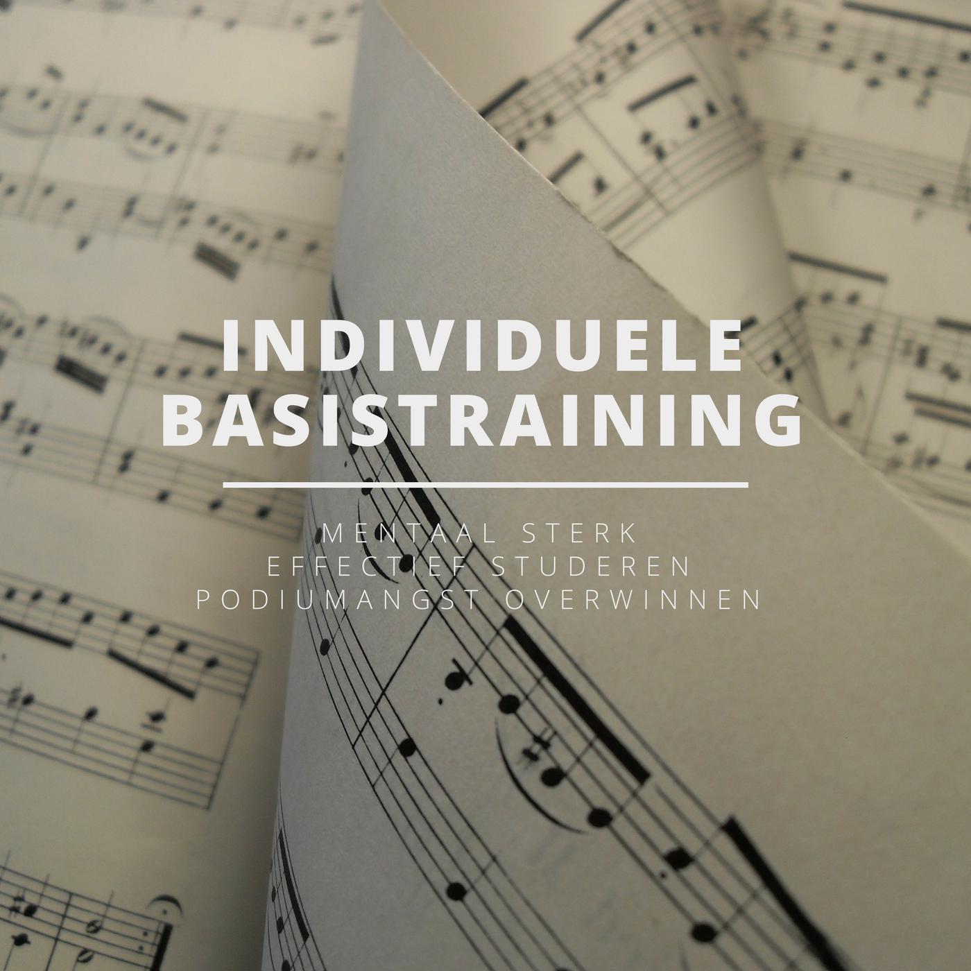 Individuele Basistraining