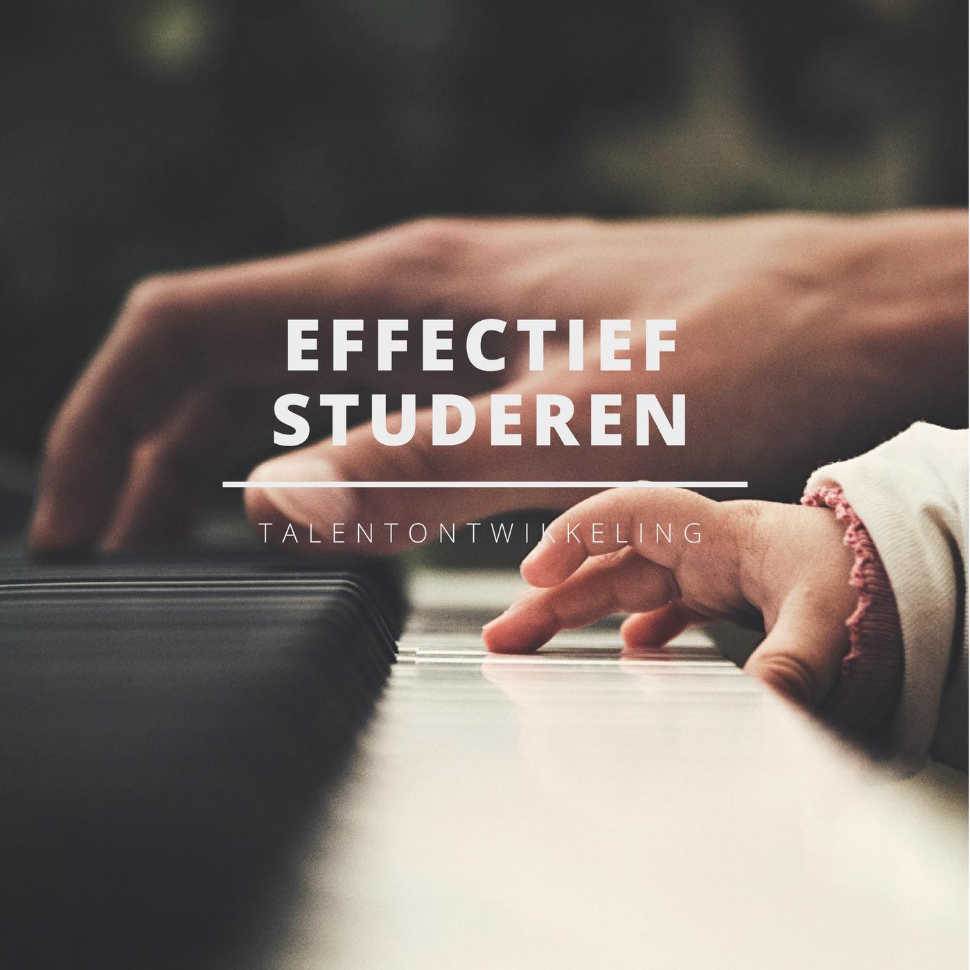 Effectief Studeren